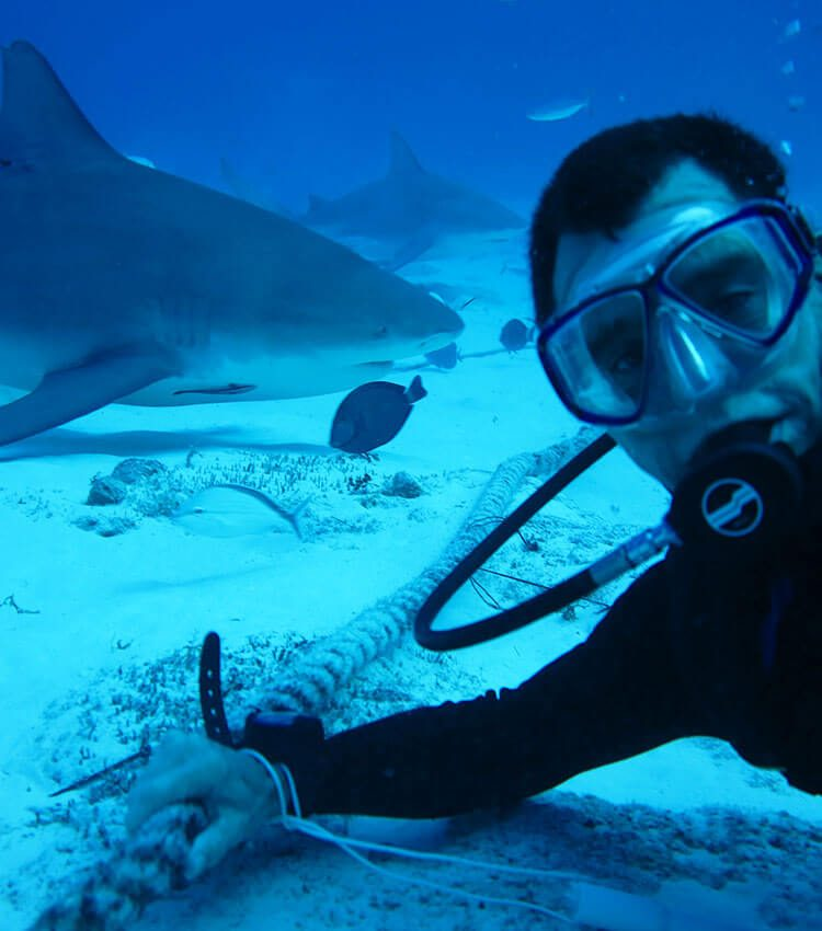 Scuba diver holding on to a rope on the bottom of the sandy ocean floor with two Bull Sharks behind him.