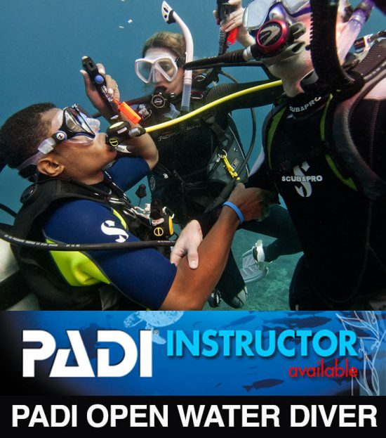 Two scuba divers holding arms , sharing air, looking up to the surface with a dive instructor beside them.