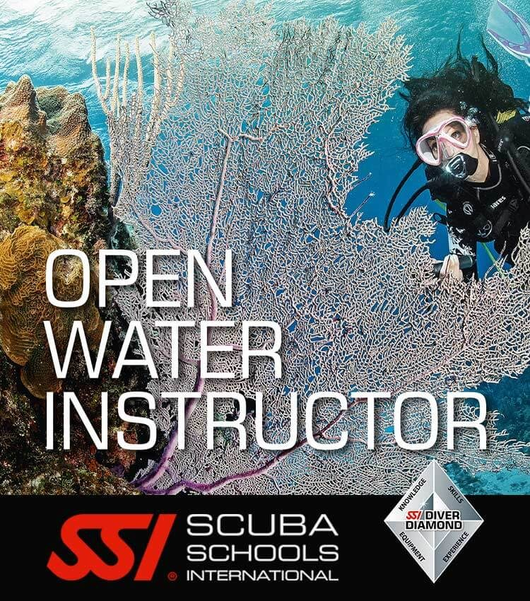 Scuba diver in mid water with a purple fan coral in front creating a frame with a title over the image - OPEN WATER INSTRUCTOR.