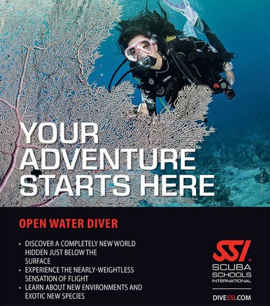 Scuba diver in mid water with a purple fan coral in front creating a frame with a title over the image - YOUR ADVENTURE STARTS HERE.