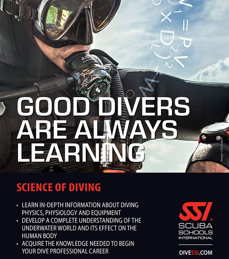 Scuba diver on the surface with regulator in mouth looking at a dive computer on their arm.